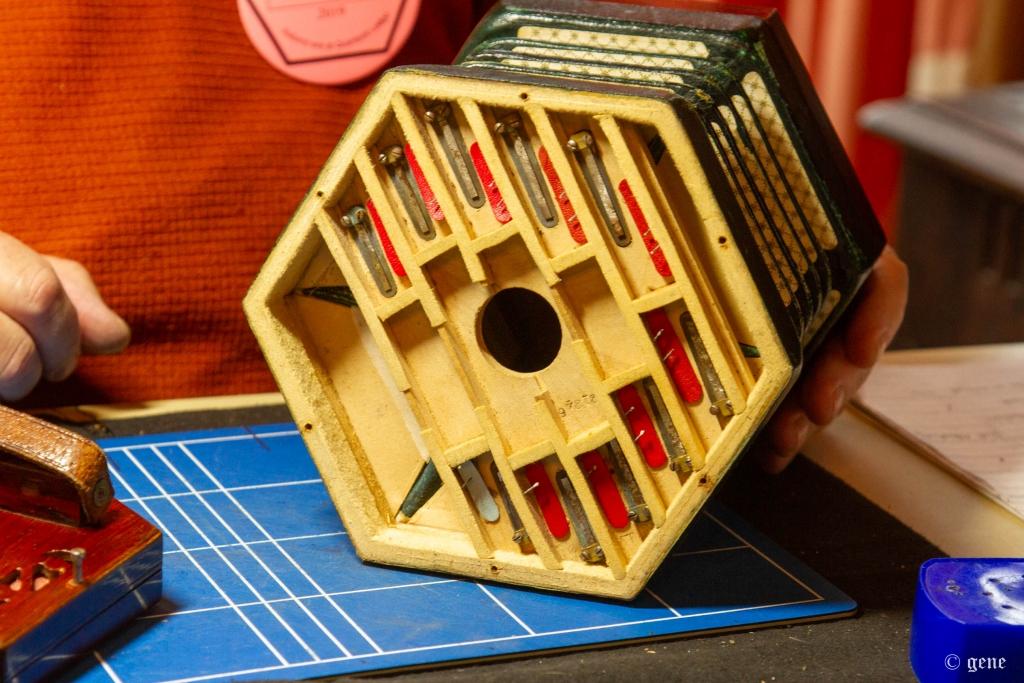 四角形のReeds Block;リードブロック