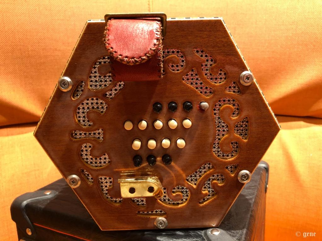 Stagi 30ボタン イングリッシュ・コンサーティーナ 右手側