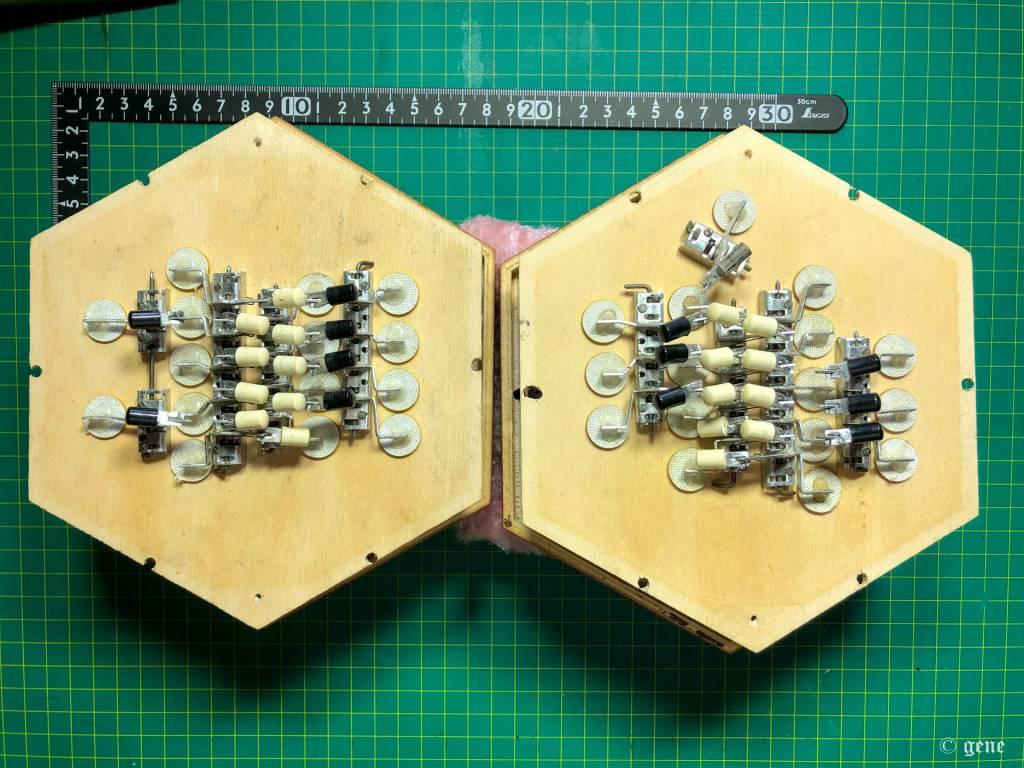 Stagi English Concertina 30ボタン Custom 内部アクション